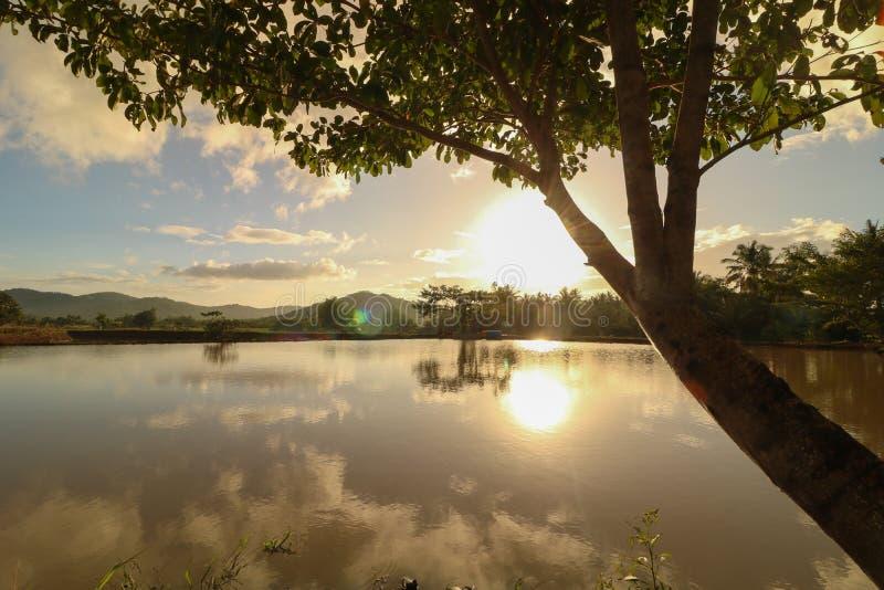 Fish pond in the Philippines. Scenic and beautiful aqua culture / fish farm / fish pond in Ocampo Camarines Sur Philippines stock images