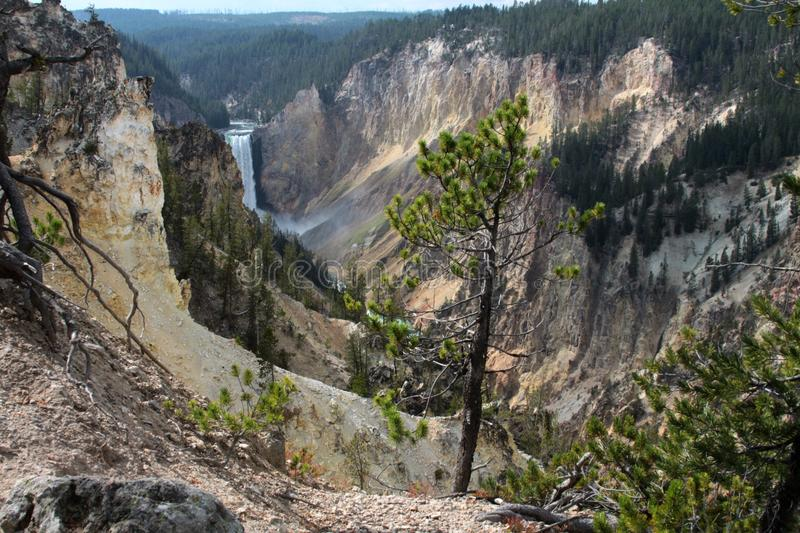 Artist Point Water Fall in Yellowstone. Scenic canyon in Yellowstone National Park at Artist Point Waterfall stock photos