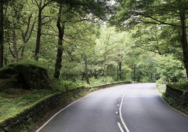 Scenic Country Road in the Northern England Lake District. Tranquil country road winding through the beautiful English Lake District with canopy of trees and stock photo