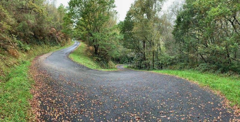 Scenic curvy road. Touristic drive in in autumn stock photos