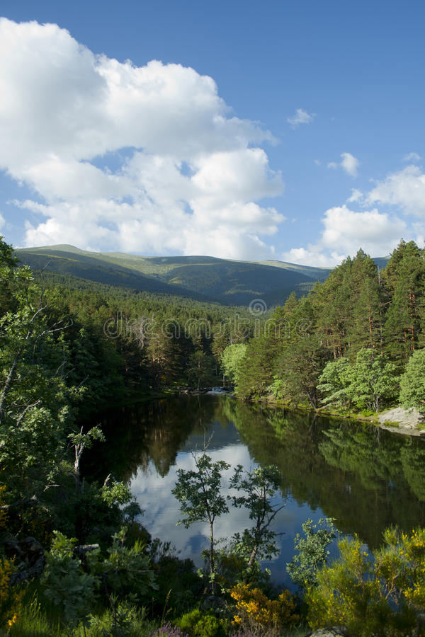 Download Scenic Dam Surrounded By Forest Stock Photo - Image of pond, ligth: 90703728