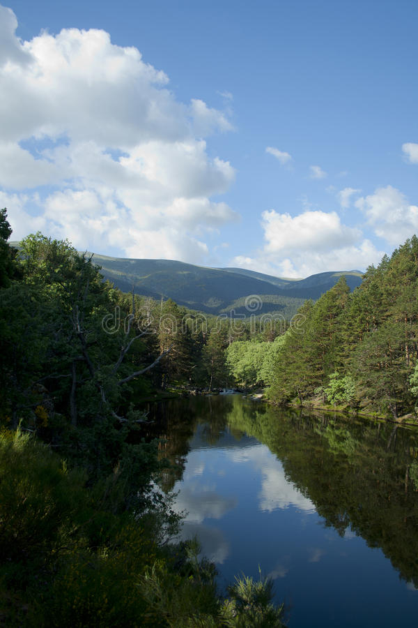 Download Scenic Dam Surrounded By A Forest Stock Photo - Image of spring, guadarrama: 90703880