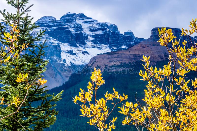 The scenic views from the Ice Field Parkway, Banff National Park royalty free stock images