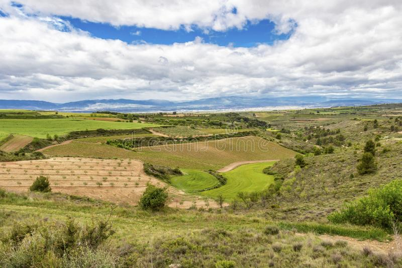 Scenic May agricultural landscape in Navarre, Spain stock images