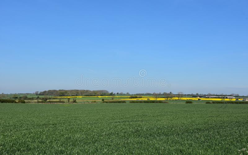 Scenic Farmland with Large Green Fields and Crops Growing. Very scenic country farmland with large fields and crops stock photo