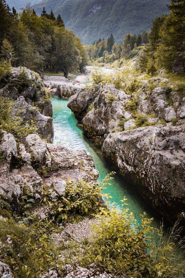 Scenic great river soca gorge in triglav national park, slovenia. Scenic great river soca gorge in triglav national park stock image