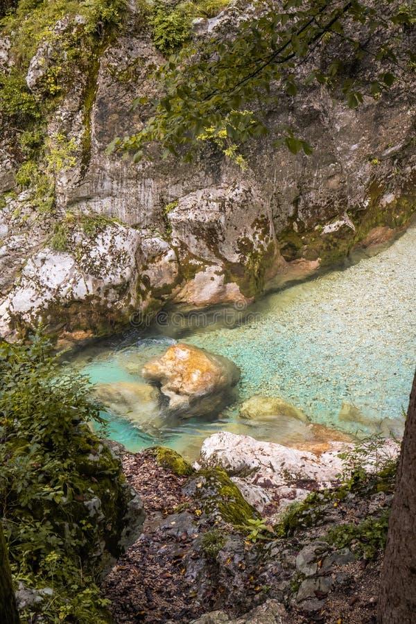 Scenic great river soca gorge in triglav national park, slovenia. Scenic great river soca gorge in triglav national park royalty free stock photography
