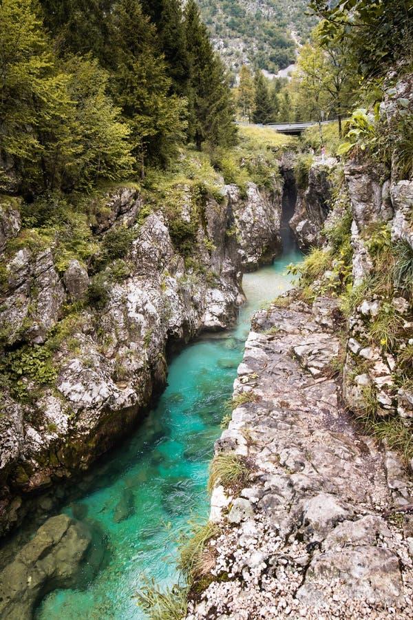 Scenic great river soca gorge in triglav national park, slovenia. Scenic great river soca gorge in triglav national park royalty free stock photo