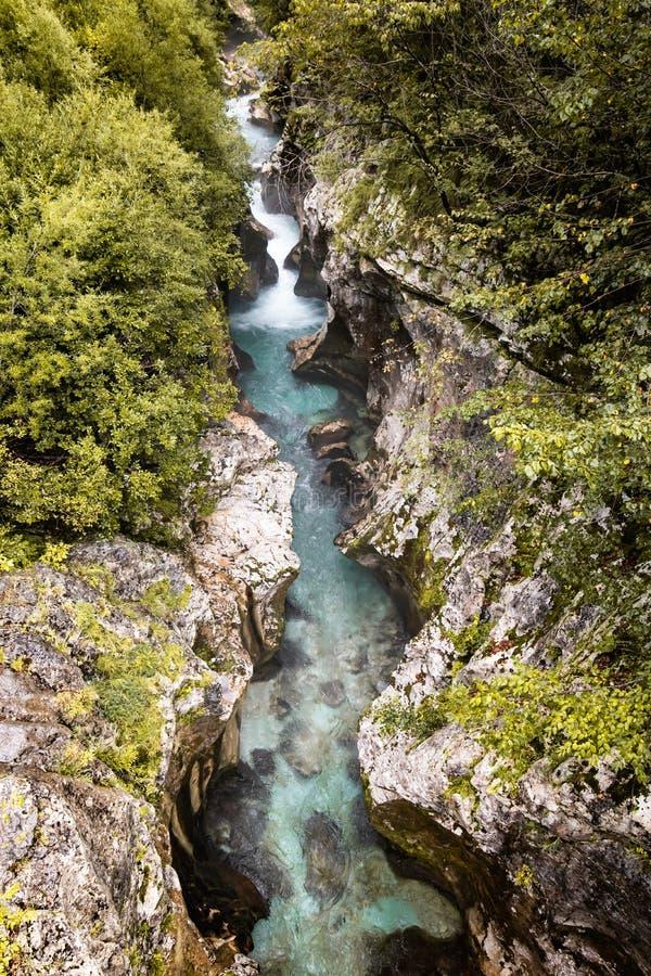 Scenic great river soca gorge in triglav national park, slovenia. Scenic great river soca gorge in triglav national park stock images