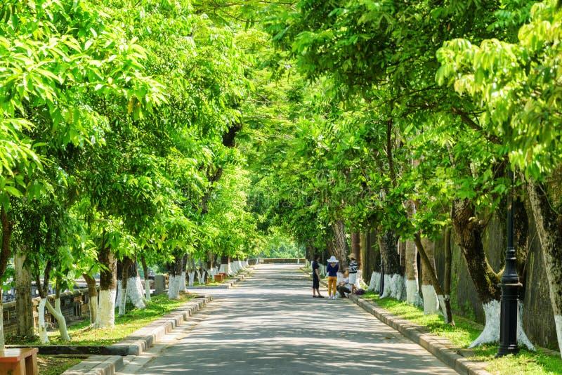 Scenic green shady street at the Imperial City, Hue, Vietnam royalty free stock photo