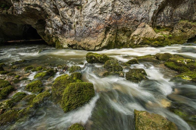 Scenic karst river Rak dissapearing in the cave system in national park Rakov Skocjan in Slovenia. Scenic karst river Rak dissapearing in the cave system in stock images