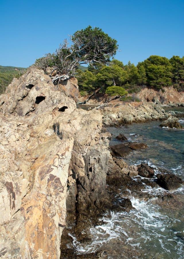 Download Scenic landscape stock photo. Image of natural, landscape - 25233502