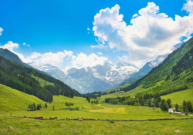 Scenic landscape in the Alps in Salzburg, Austria royalty free stock image