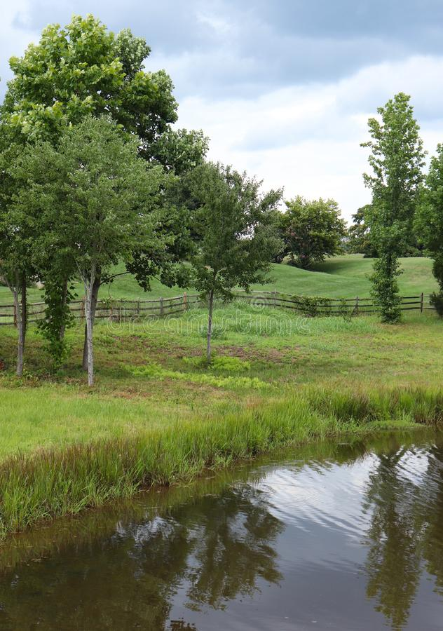 Trees and Pond With a Fence in the Center stock photos