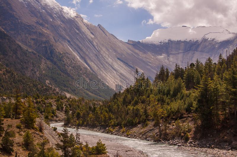 Scenic landscape with blue river, pine forest, snow peak and epic mountain background. stock image