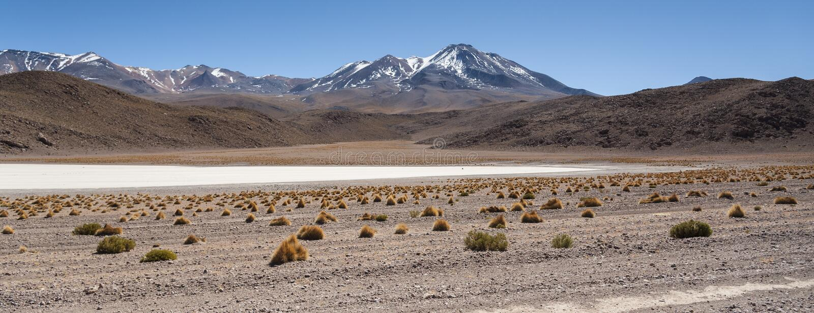 Scenic landscape of Canapa Lagoon Laguna Canapa in the Andes mountain range near the Uyuni salt flat, Bolivia, stock photography