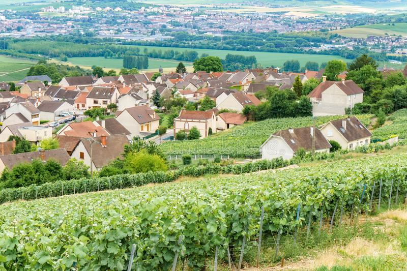 Scenic landscape in the Champagne, Vineyards in the Montagne de Reims royalty free stock photography