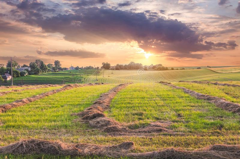 Scenic landscape:  field with beveled grass at sunset. Clouds during the sunset over the field with hay _. Scenic landscape:  field with beveled grass at sunset stock image