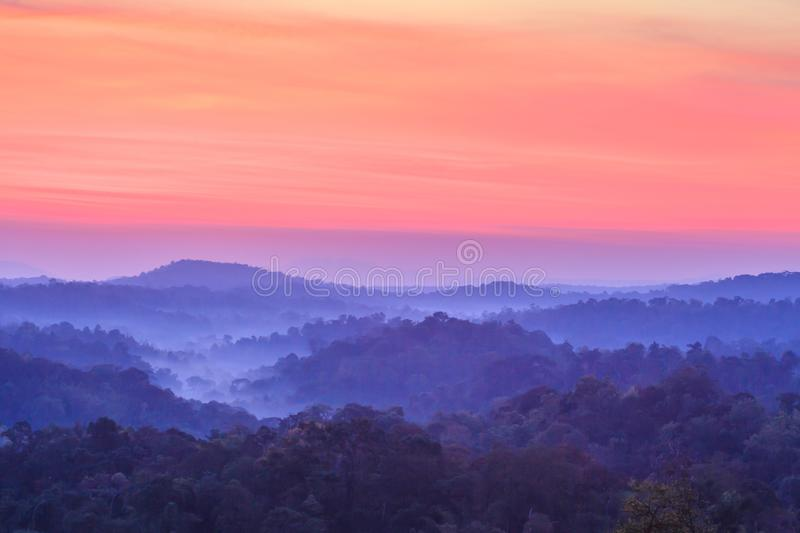 Scenic landscape of tropical forest and blue mountain. royalty free stock photos