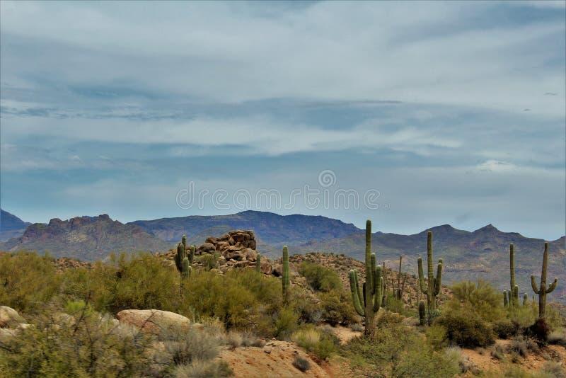 Bartlett Lake reservoir, Maricopa County, State of Arizona, United States scenic landscape view. Scenic landscape view of surrounding area of Bartlett Lake royalty free stock image