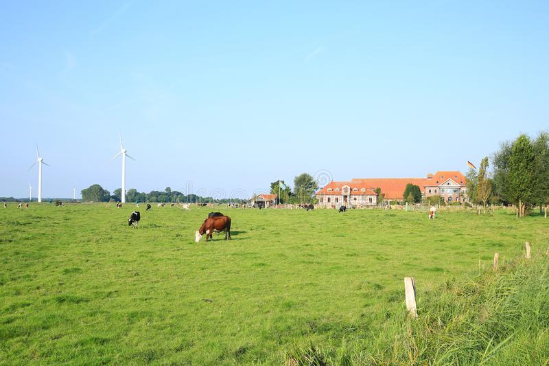 Scenic landscape in Wangerland, Friesland, Lower Saxony, Germany royalty free stock image