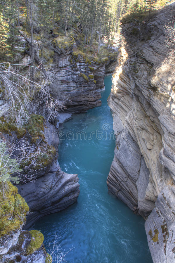Scenic landscapes in Jasper National Park, Alberta, Canada. Blue Green water runs through the carved canyon walls, Athabasca Falls, Jasper National Park, Canada stock photo