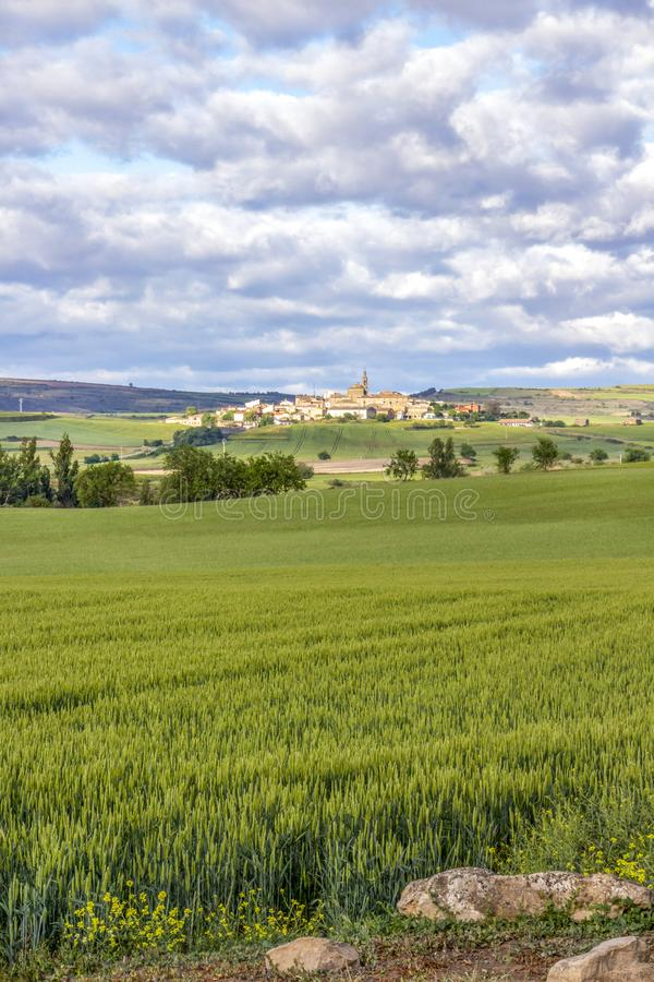Scenic May landscape as seen from an unpaved country road on the Camino de Santiago, Way of St. James in Navarre, Spain stock photos