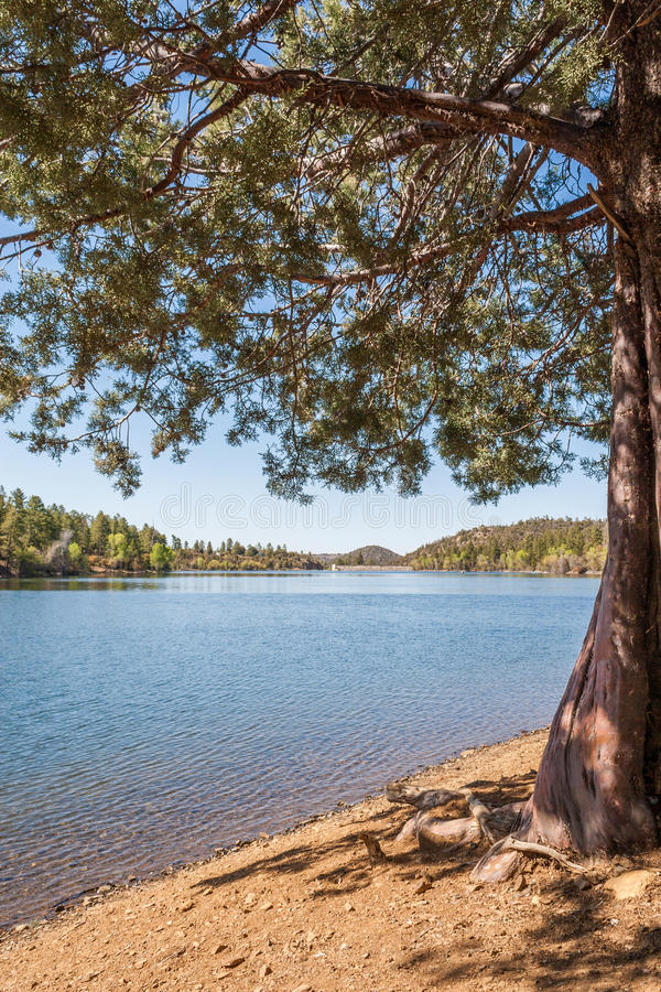 Scenic Mountain Lake royalty free stock photography