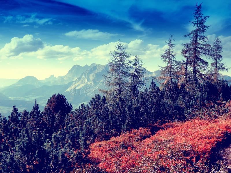 Scenic mountain landscape royalty free stock photos