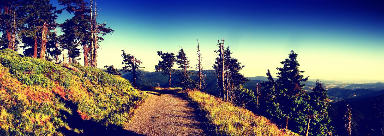 Scenic mountain landscape with gravel road royalty free stock images