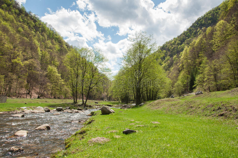 Scenic natural landscape and lush vegetation stock photography