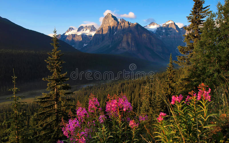 Scenic nature landscape in Canada stock photography