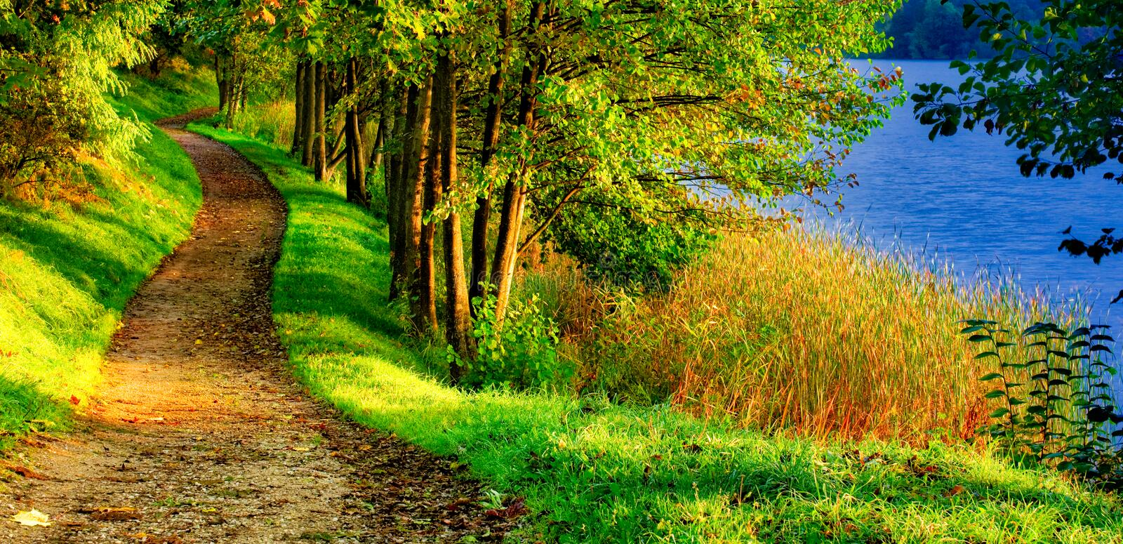 Scenic nature landscape of path near lake. Forest path tunnel through trees near lake, scenic nature autumn landscape panorama view stock photo