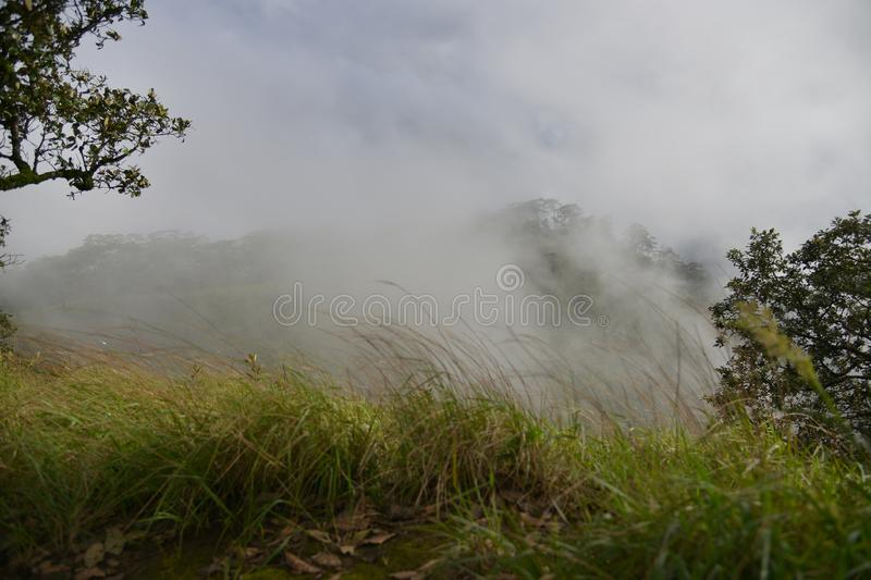 Scenic of Nature at Phu Soi Dao National Park royalty free stock photo