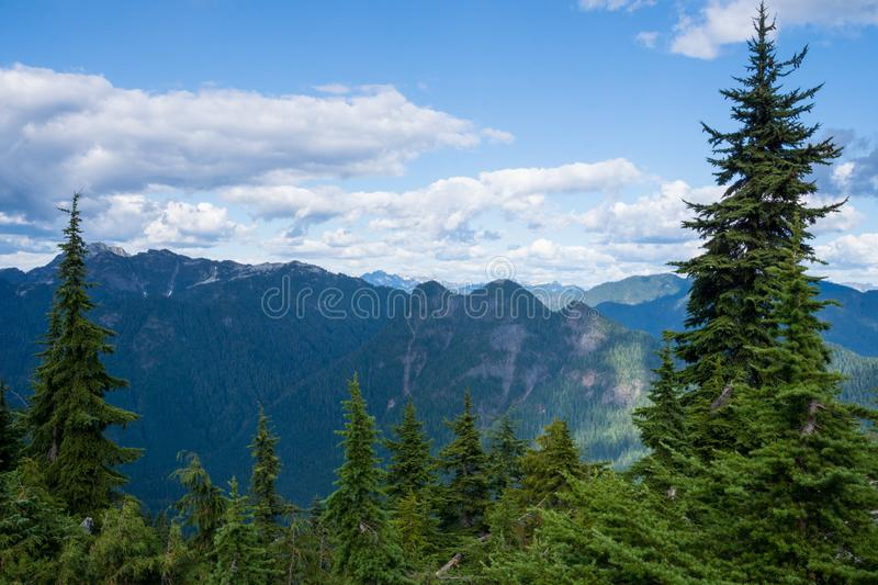 Scenic panorama over the mountains of North Vancouver in summer, snow pine trees, Canada, BC royalty free stock photos