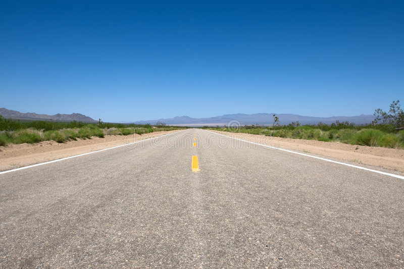 Download Scenic road stock photo. Image of long, grey, joshua, direction - 6685866