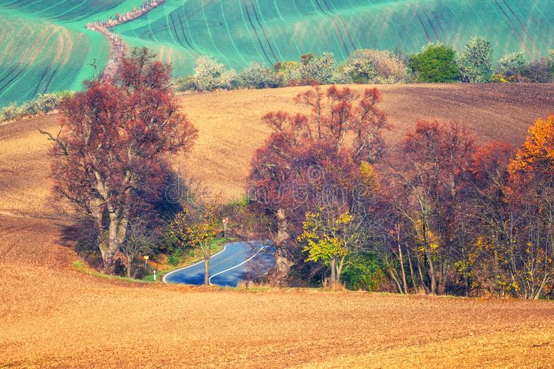 Scenic road through the autumn agricultural fields, colorful rural landscape stock photography