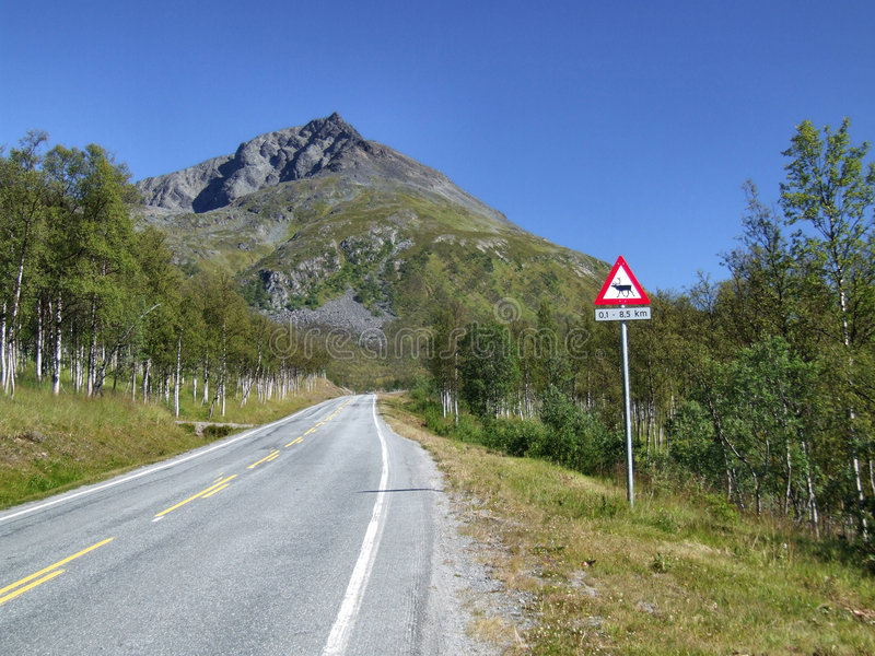 Scenic road and reindeer warning stock photos