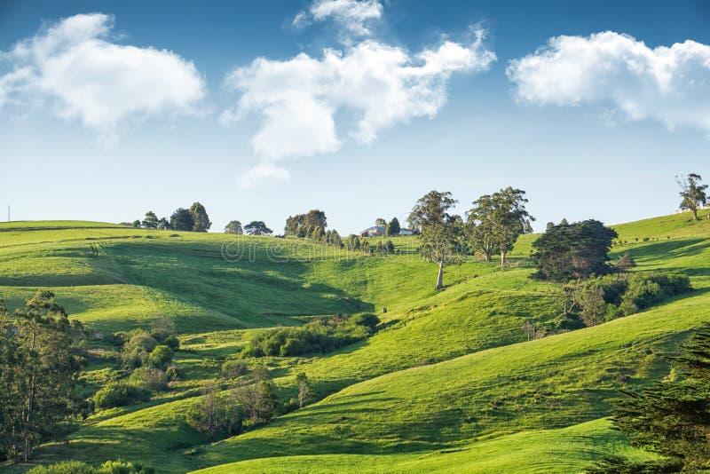 Scenic rural Australia stock photo