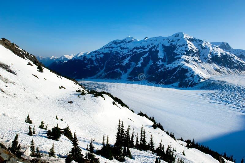 Scenic Salmon Glacier royalty free stock photo