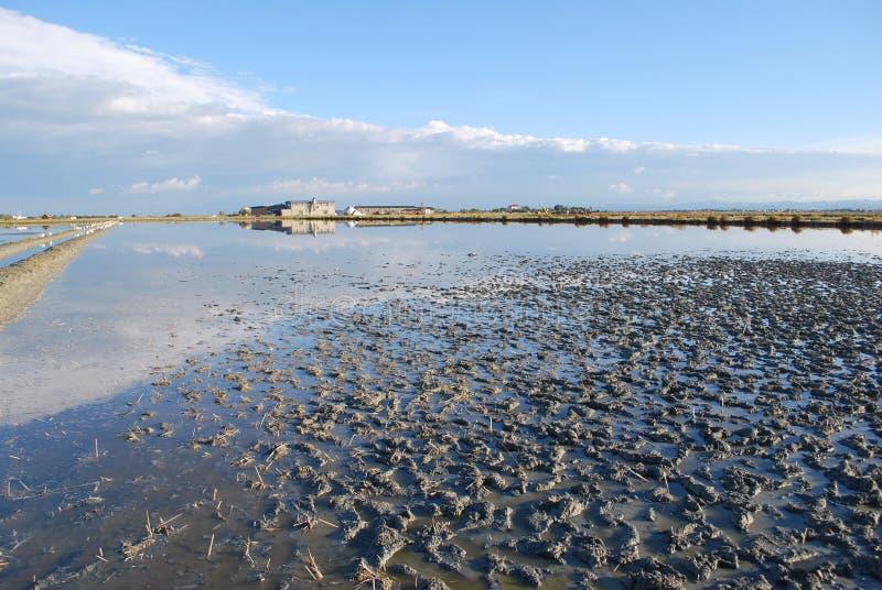Download Scenic salt pan stock image. Image of sunlight, mediterranean - 28792409
