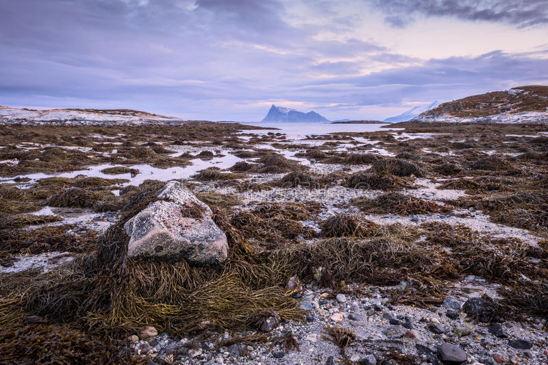 A scenic seascape in Sommaroy, Norway stock photo