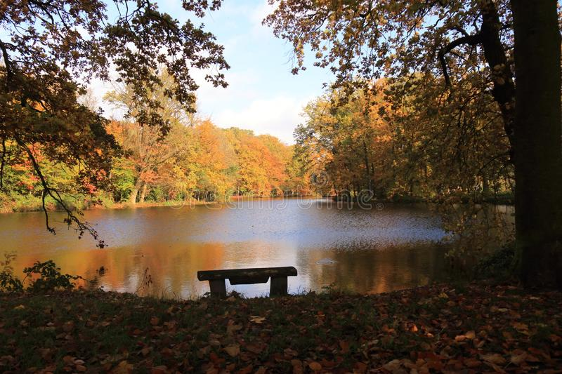 Scenic seasonal fall autumn scene at lake stock photography