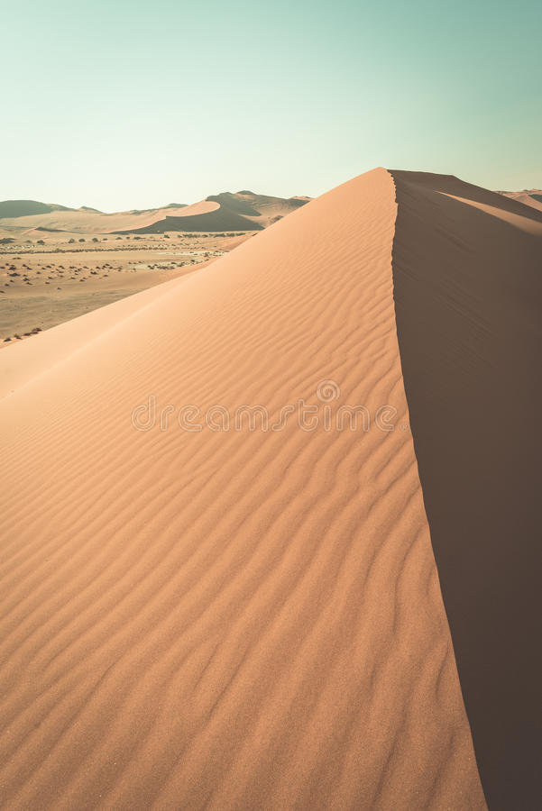 The scenic Sossusvlei and Deadvlei, surrounded by majestic sand dunes. Namib Naukluft National Park, main visitor attraction and t royalty free stock photos