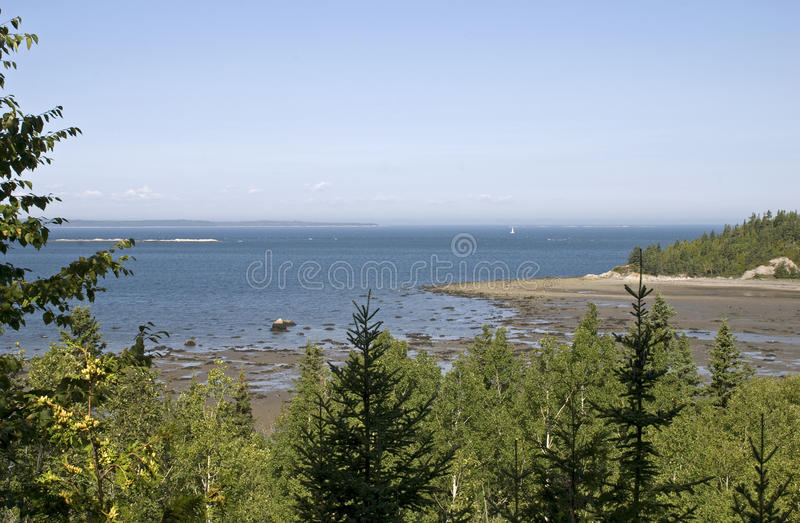 Download Scenic St. Lawrence River Shore Stock Image - Image: 10927277