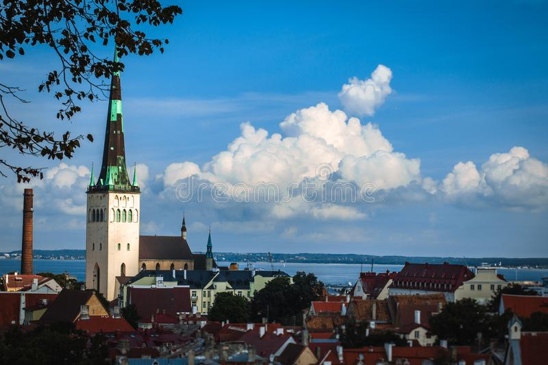 Scenic summer aerial panorama of the Old Town architecture in Tallinn, Estonia. View with traditional red tile roofs stock image