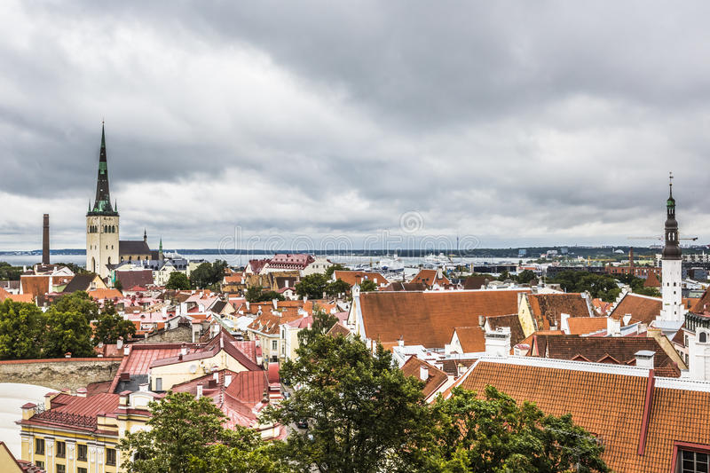 Scenic summer aerial panorama of the Old Town in Tallinn, Estoni royalty free stock photo