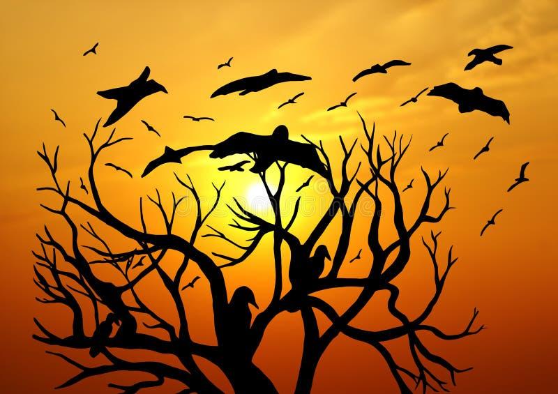 Download Scenic Sunset stock illustration. Image of branches, orange - 24507531