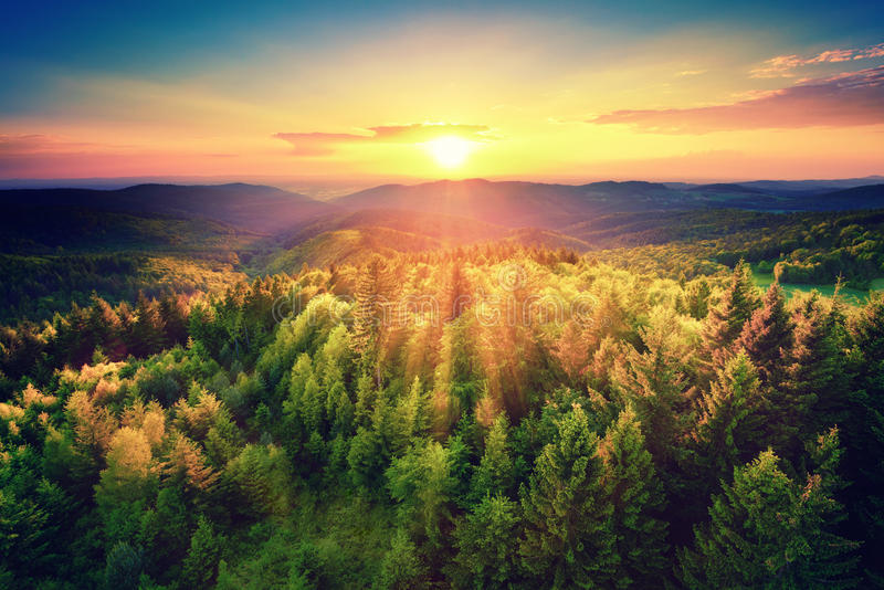 Scenic sunset over the forest. Bird's-eye view of a scenic sunset over the forest hills, with toned dramatic colors royalty free stock images
