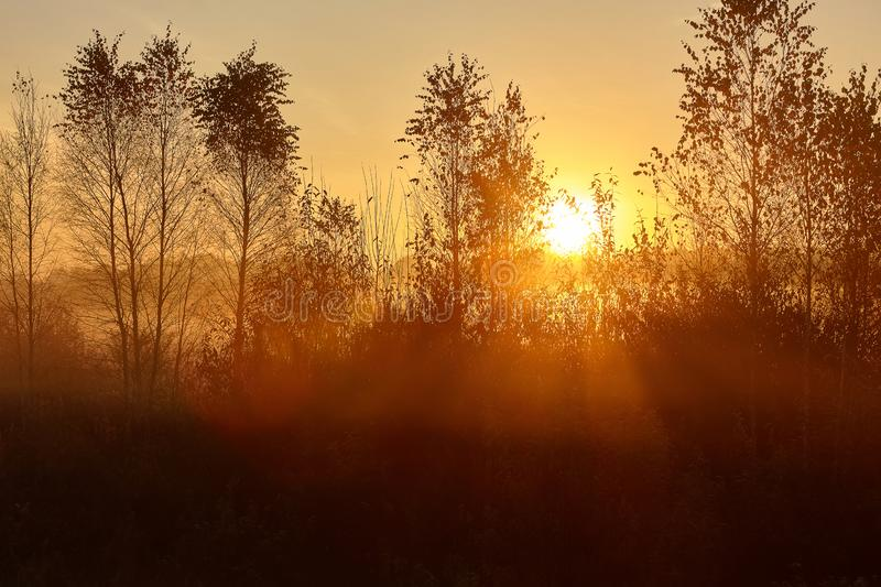 Scenic and tender landscape with sunrise stock image